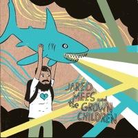 Caffeine Alcohol Sunshine Money by Jared Mees & The Grown Children