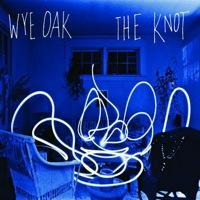 Take It In by Wye Oak