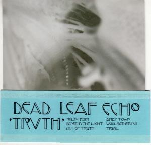 dead_leaf_echo-truth