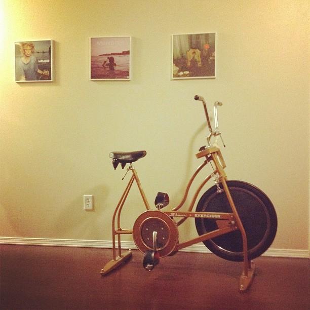 Vintage Schwinn Exerciser