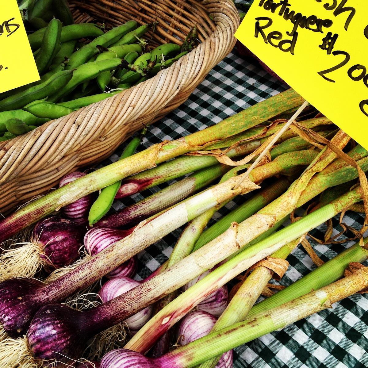 mount-vernon-farmers-market
